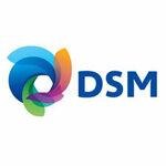 final-DSM